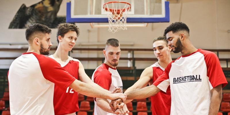 Statymai ir krepšinis - komandos sudėtis